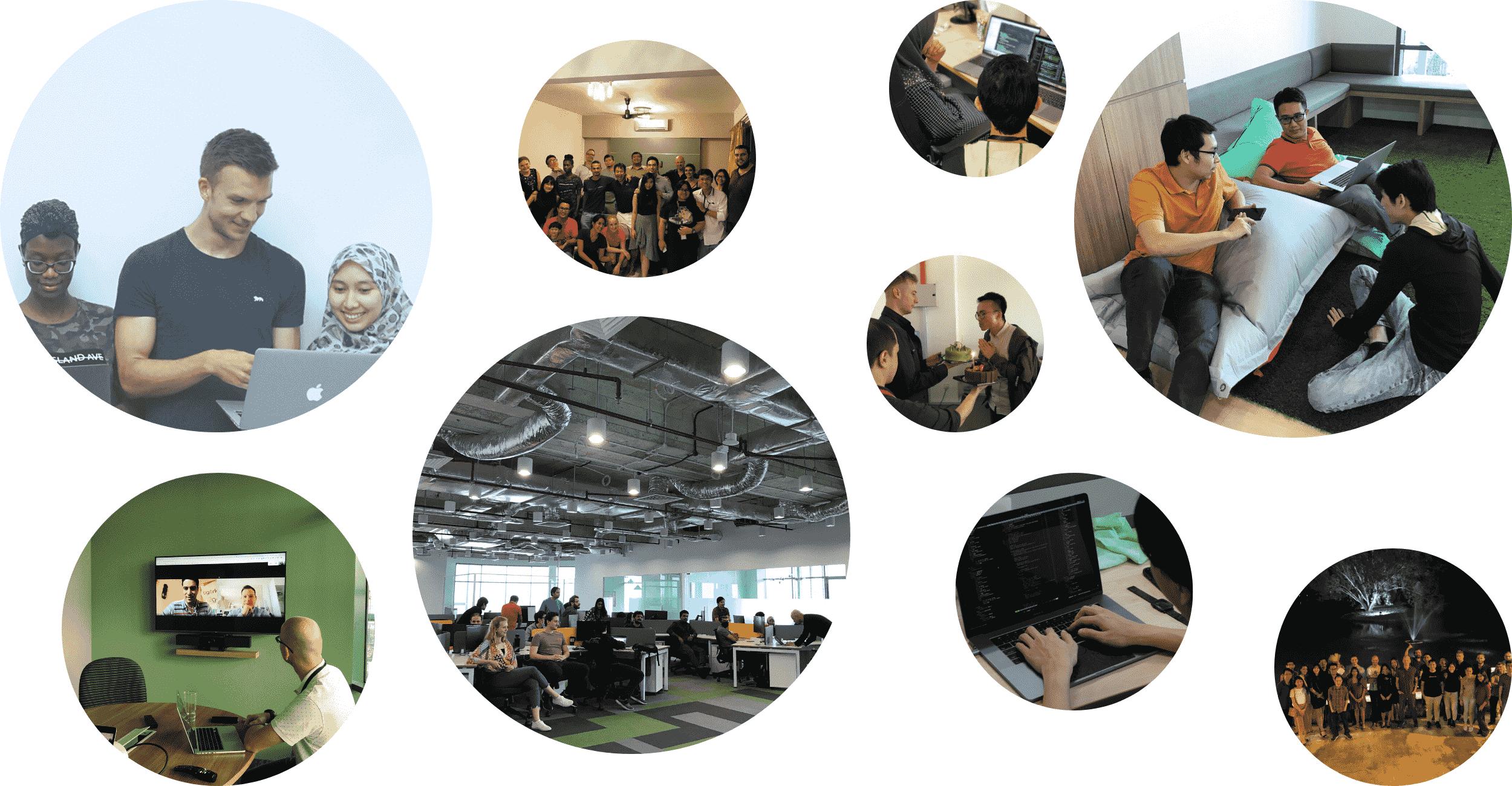 tigerlab team and office photos